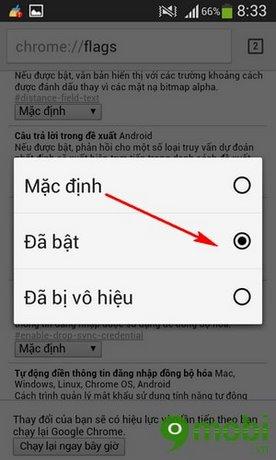 bật tiên đoán của Google Chrome
