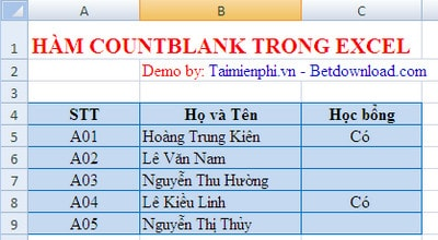 ham countblank trong excel