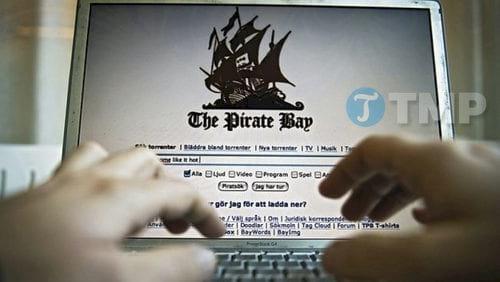 trang web torrent