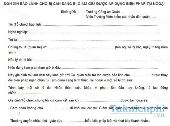 download mau don xin bao lanh cho bi can dang bi tam giu duoc ap dung bien phap tai ngoai